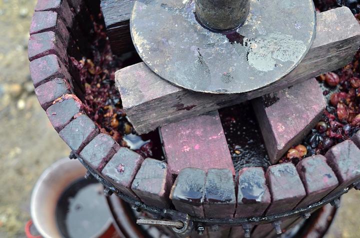 大人の科学バー・ワイン編vol.6「発酵と道具 ー歴史上の大発明との意外な関係」