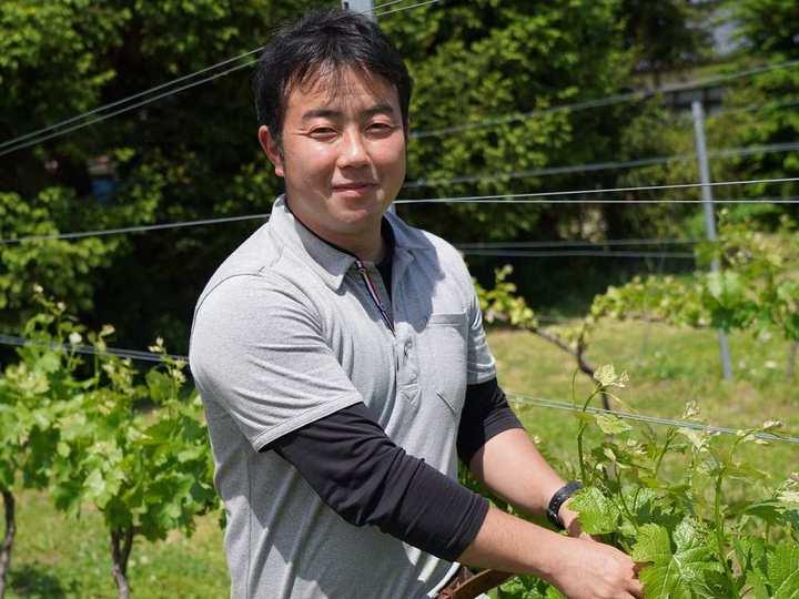 \5/22、6/19、7/17、8/21開催/信州山形村の大池(たいけ)ワイン醸造所見学&試飲 オンラインツアー