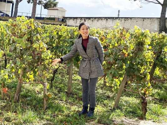 \ブラックフライデー特価/11月27日(金)~29日(日)の3日間限定で最大50%オフ!オトクに参加できるワイン・オンラインツアー