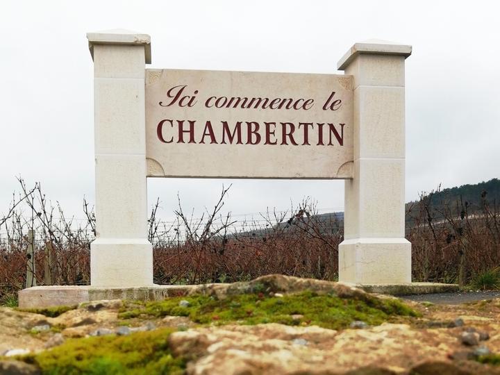 \ブルゴーニュの王と称されるシャンベルタン/ シャンベルタンのグランクリュ畑とドメーヌ『クロード・デュガ』をオンラインで訪問
