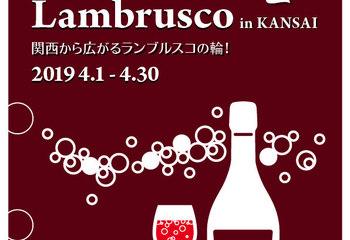 Festa del Lambrusco 2019 Finale!!