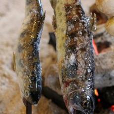【日本のご当地グルメ】山女魚とグリュー...