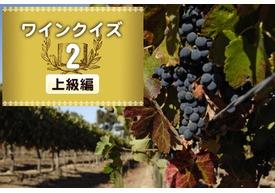 めざせワイン知識王!ワインクイズ【上級編】vol.2 ~ブドウ品種について