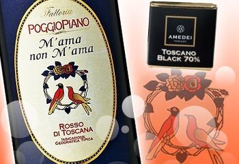 【バレンタイン】チョコレートと一緒に☆ロマンチックな名前のワイン「マーマ・ノン・マーマ」
