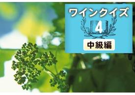 めざせワイン知識王!ワインクイズ【中級編】vol.4 ~生育について~