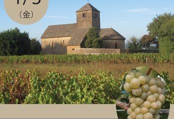 【ワインイベント】いよいよ明後日、世界のシャルドネ飲み比べ ~ワインノムリエの会@池袋
