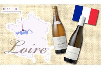 フランス ロワール 社内セミナーレポート