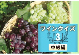 めざせワイン知識王!ワインクイズ【中級編】vol.3 ~ブドウについて~