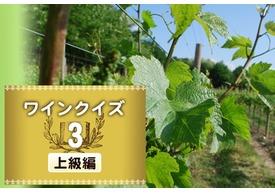 めざせワイン知識王!ワインクイズ【上級編】vol.3 ~ブドウの生育について