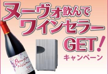 ついにボージョレ・ヌーヴォ解禁!ワインセラープレゼントキャンペーンもスタートです!
