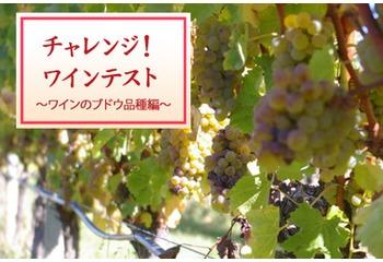 チャレンジ!ワイン5問テスト【ワインのブドウ品種編】