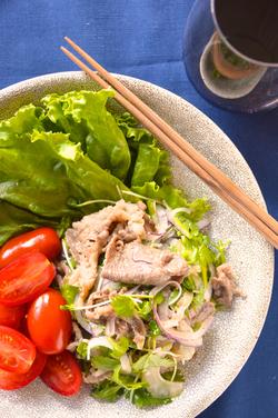牛肉のエスニック風サラダ