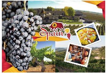 産地で異なるスペインワインの魅力 カスティーリャ・イ・レオンとカタルーニャの赤ワイン【2019】