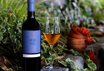 ワイン発祥の地・ジョージア ジョージアのアンバーワインとは?【2019】