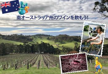 南オーストラリア州のワインを飲もう! 【2020】